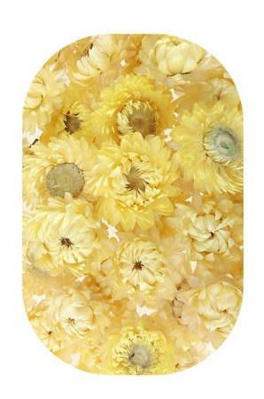 KOCANKA SUSZONA MIX BLADOŻÓŁTY (suchołuska, nieśmiertelnik) kwiaty suszone suszki dekoracyjne